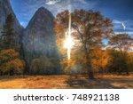 Sunburst Through Yellow Fall...
