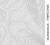 topographic map background... | Shutterstock .eps vector #748921960