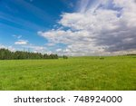 green plain grass land  | Shutterstock . vector #748924000