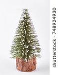 Miniature Christmas Tree On...