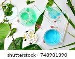 natural organic botany and... | Shutterstock . vector #748981390