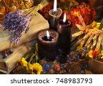 lavender bunch  healing herbs ... | Shutterstock . vector #748983793