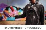 graffiti artist | Shutterstock . vector #749006890