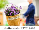 beautiful violet or purple... | Shutterstock . vector #749012668
