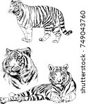 set of vector drawings on the... | Shutterstock .eps vector #749043760
