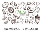 nuts and seeds collection.... | Shutterstock .eps vector #749065150
