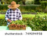 farmer with harvested... | Shutterstock . vector #749094958