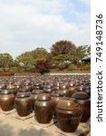 korean traditional  beautiful... | Shutterstock . vector #749148736