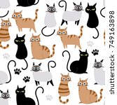Stock vector cute cat seamless pattern and vector 749163898