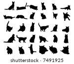 cat | Shutterstock .eps vector #7491925