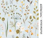 flower watercolor pattern ... | Shutterstock . vector #749198209