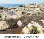 limestone surface with rock... | Shutterstock . vector #749244754