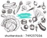 set of vegetables. hand drawn.... | Shutterstock .eps vector #749257036