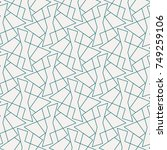 vector seamless pattern and... | Shutterstock .eps vector #749259106