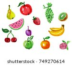 hand drawn watercolor fruits on ... | Shutterstock . vector #749270614