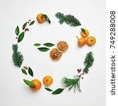 christmas round frame from... | Shutterstock . vector #749288008