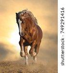 wild chestnut stallion running... | Shutterstock . vector #749291416
