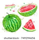 watercolor illustrations set of ...   Shutterstock . vector #749294656