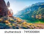 fabulous autumn scene of... | Shutterstock . vector #749300884