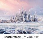 mysterious landscape majestic... | Shutterstock . vector #749303749