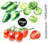watercolor vegetables set.... | Shutterstock . vector #749323099