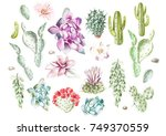 set with watercolor cacti and... | Shutterstock . vector #749370559