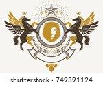 heraldic coat of arms... | Shutterstock .eps vector #749391124