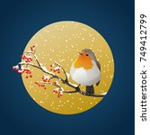 robin perched on snowy branch... | Shutterstock .eps vector #749412799