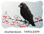 raven perched on branch with... | Shutterstock .eps vector #749413399