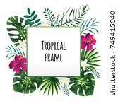 square tropical frame  template ... | Shutterstock . vector #749415040