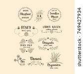 vector set of handdrawn floral... | Shutterstock .eps vector #749427934