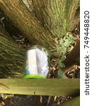 Small photo of Empty jar with piece of paper, a hidden geo cache