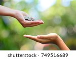 Small photo of money on hand philanthropy concept give donate charity finance and grant