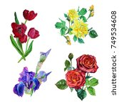 watercolor set of isolated on... | Shutterstock . vector #749534608