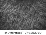 White Fur Texture Close Up - Fine Art prints