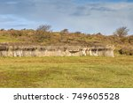 Remains Of The By Germans Buil...