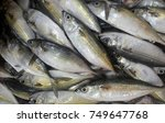 Various Types Of Fish Are...