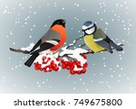 bullfinch and titmouse sitting... | Shutterstock .eps vector #749675800