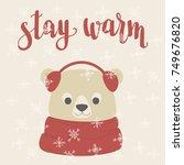 winter inspired hand lettering... | Shutterstock .eps vector #749676820