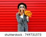 fashion autumn pretty woman... | Shutterstock . vector #749731573