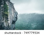 mountainside with tree foliage... | Shutterstock . vector #749779534