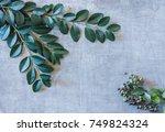 minimalism | Shutterstock . vector #749824324