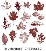 set of autumn leaves  maple ... | Shutterstock .eps vector #749846680