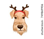 dog with a christmas reindeer... | Shutterstock . vector #749869906