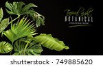 vector botanical horizontal... | Shutterstock .eps vector #749885620