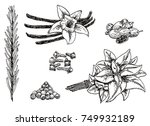 vector ink hand drawn style set ...   Shutterstock .eps vector #749932189