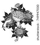 flamingo with chrysanthemum...   Shutterstock .eps vector #749947030