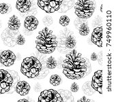 hand drawn vector illustrations.... | Shutterstock .eps vector #749960110