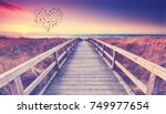 wooden path at baltic sea over... | Shutterstock . vector #749977654