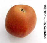 Small photo of Hadelner Rotfranche, Rotfrance, Apple, malus, domestica